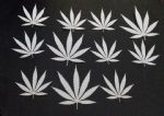 "Cannabis leaf  plastic pieces   - approx. 1.5"" high Mylar 350 micron"